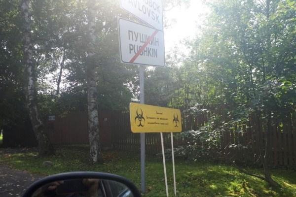 intim-uslugi-v-pushkine-i-pavlovske